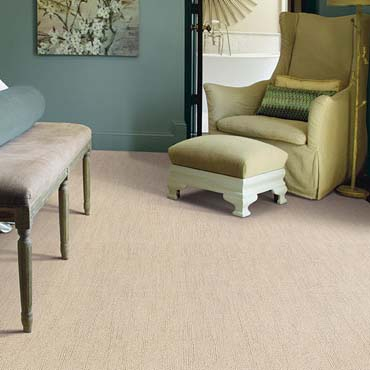 Caress Carpet by Shaw | Danbury, CT